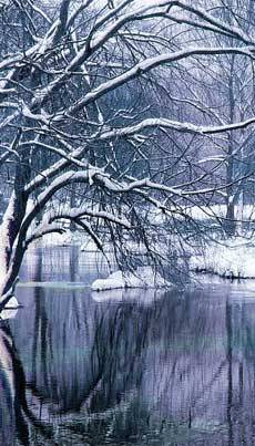 winter-lake-230
