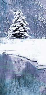 winter-tree-lake-160